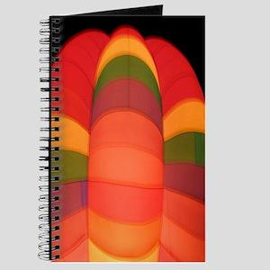 Rainbow Bright Balloon Journal