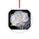 """New 2009 Ornament titled: """"Nanchez White&quot"""