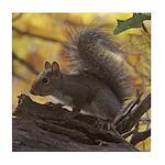 Autumn Squirrel Tile Coaster