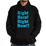 Right Here! Right Now!! Hoodie (dark)