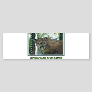 Endangered Florida Panther Bumper Sticker