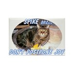 Don't Postpone Joy Rectangle Magnet