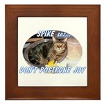 Don't Postpone Joy Framed Tile