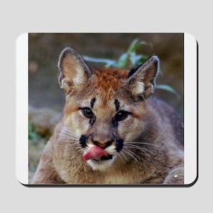 Cougar Cub Mousepad