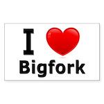 I Love Bigfork Rectangle Sticker