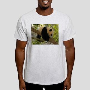 Baby Panda Cub Ash Grey T-Shirt