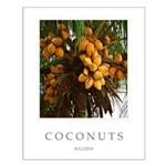 Caribbean Coconuts Small Poster