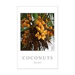 Caribbean Coconuts Mini Poster Print