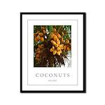 Caribbean Coconuts Framed Panel Print