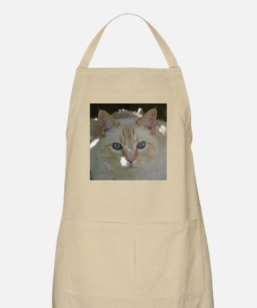 Flame Point Cat Apron