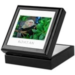 Roatan Monkey Keepsake Box