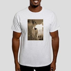 CUTEST DONKEY Ash Grey T-Shirt