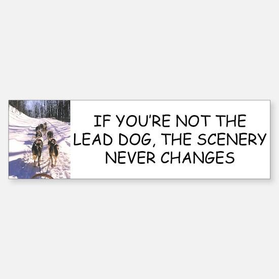 Lead Dog Bumper Bumper Bumper Sticker