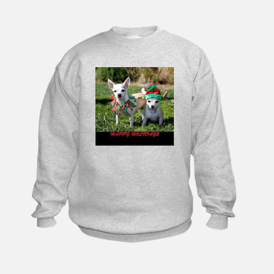 Chihuahuas Sweatshirt
