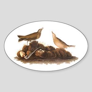 Brown Lark Audubon Birds of America Vintage Sticke