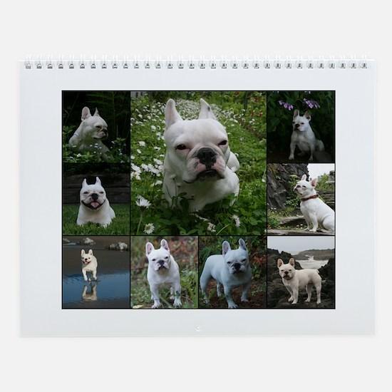 The Life of a French Bulldog Callendar