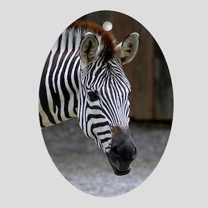 Ornaments Oval Zebra