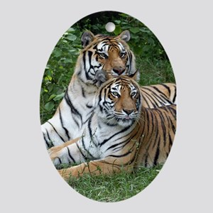 Ornaments Oval Two Tigers
