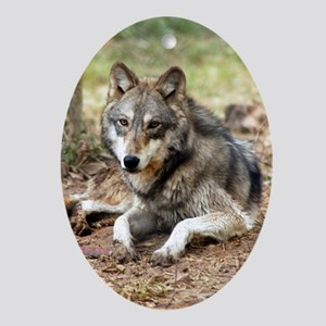 Ornaments Oval Grey Wolves
