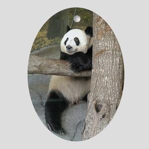 Ornaments Oval Giant Panda 2
