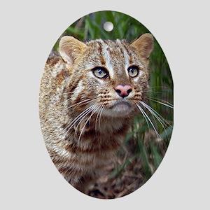 Ornaments Oval Amur Leopard Cat