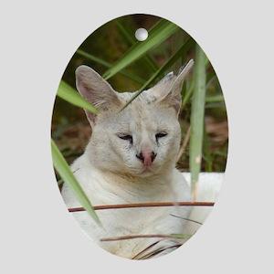 Oval Ornament White Serval