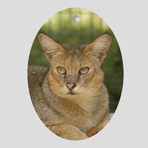 Oval Ornament Jungle Cat