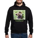 Keeshond Puppy Hoodie (dark)