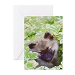 Keeshond Puppy Greeting Cards (Pk of 10)