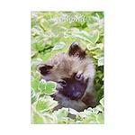 Keeshond Puppy Mini Poster Print