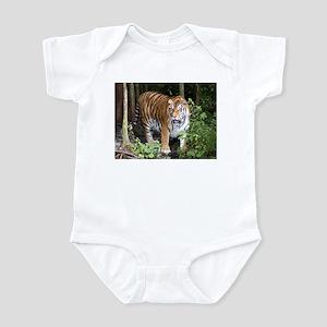 Tiger 3 Infant Creeper
