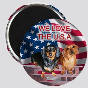 Love USA Magnet