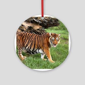 Tiger Nini Ornament (Round)