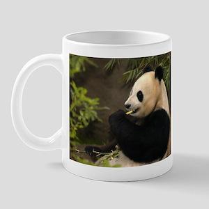 Giant Panda 4 Mug