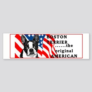 Boston with flag Bumper Sticker