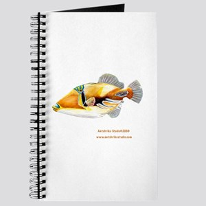 Picasso triggerfish Journal