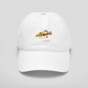 Picasso triggerfish Cap
