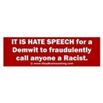 Racist Hate Speech Sticker (Bumper)