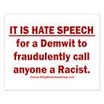 Racist Hate Speech Small Poster