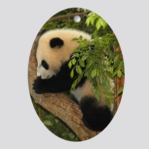 Giant Panda Baby 2 Oval Ornament