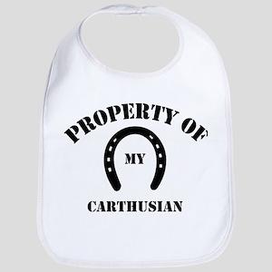 My Carthusian Bib