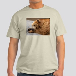 Bear 3 Ash Grey T-Shirt