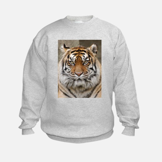 Tiger 12 Jumpers