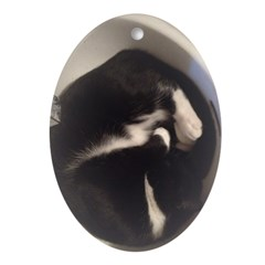 Cat in Sink Oval Ornament