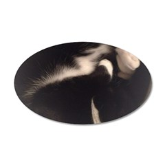 Cat in Sink Decal Wall Sticker