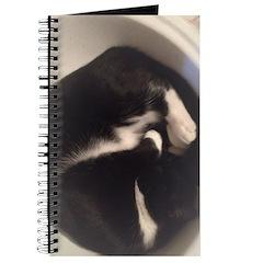 Cat in Sink Journal