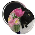 Cat with Tulips Magnets