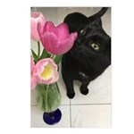 Cat With Tulips Postcards (package Of 8)