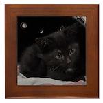 Baby Cleo Framed Tile