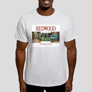 Redwood Americasbesthistory.com Light T-Shirt